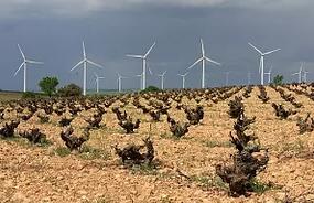 Japón se interesa por las energías renovables en Castilla- La Mancha