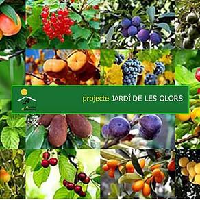 'Projecte Jardí de les Olors', comienza la cuenta atrás!