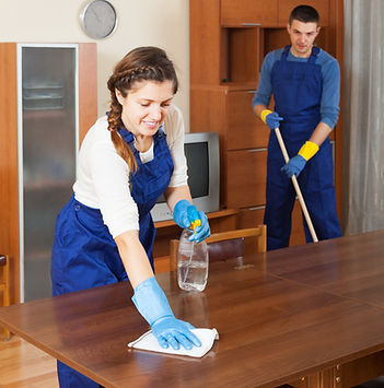 Professional%20cleaners%20dusting%20wood