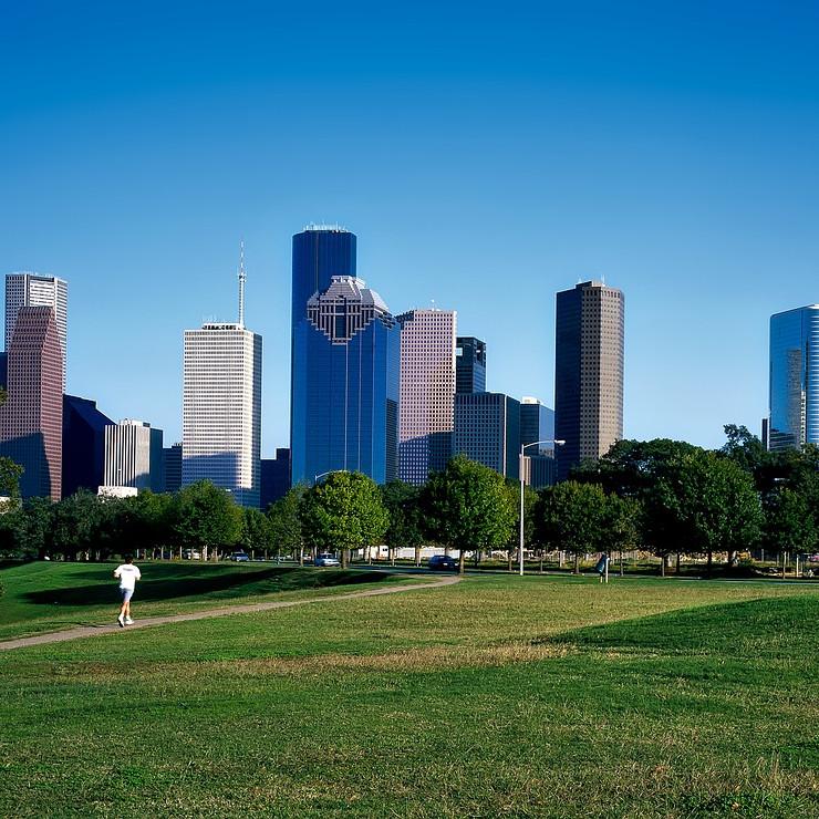Colloque FLAM Houston 2020