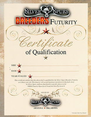 SSBF certificate.jpg