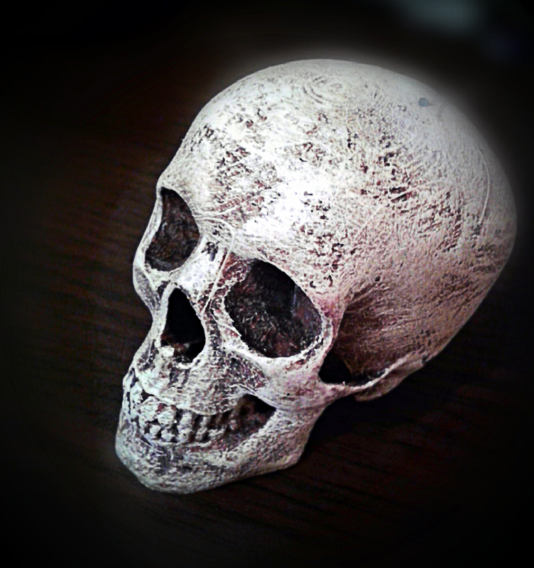 painted skull.jpg
