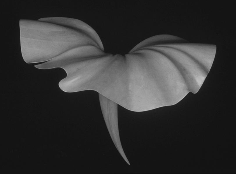 Santa Fe Wall Flower