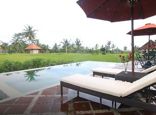 8 Days Wellness Yoga Retreat in Ubud, Ba