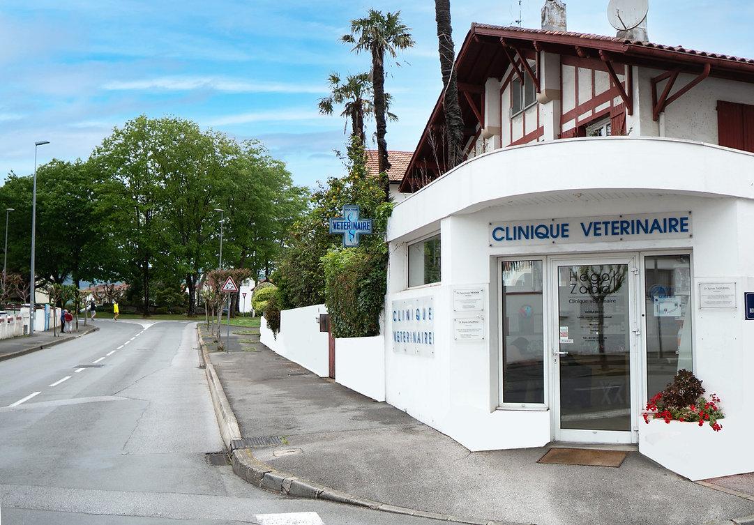 Clinique-vétérinaire-Hegal-Zabal-modifiée-(002).jpg