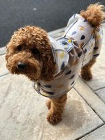 Bailey Raincoat