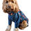 Thumbnail: Ruby Coat