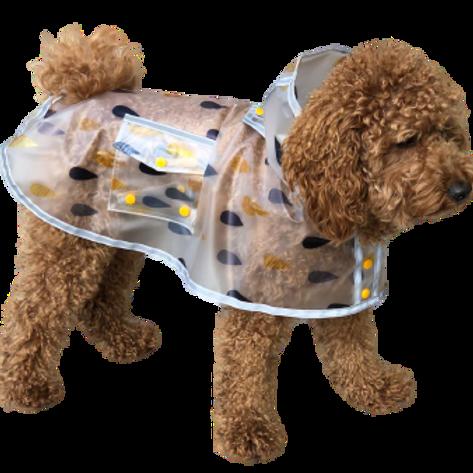 Pattern Transparent Raincoat