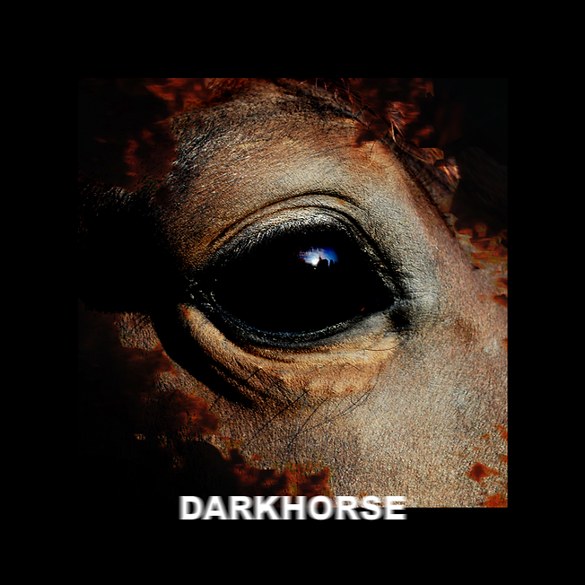 darkhorse final.png