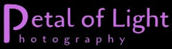 Petal of Light Photography Logo Black Sm