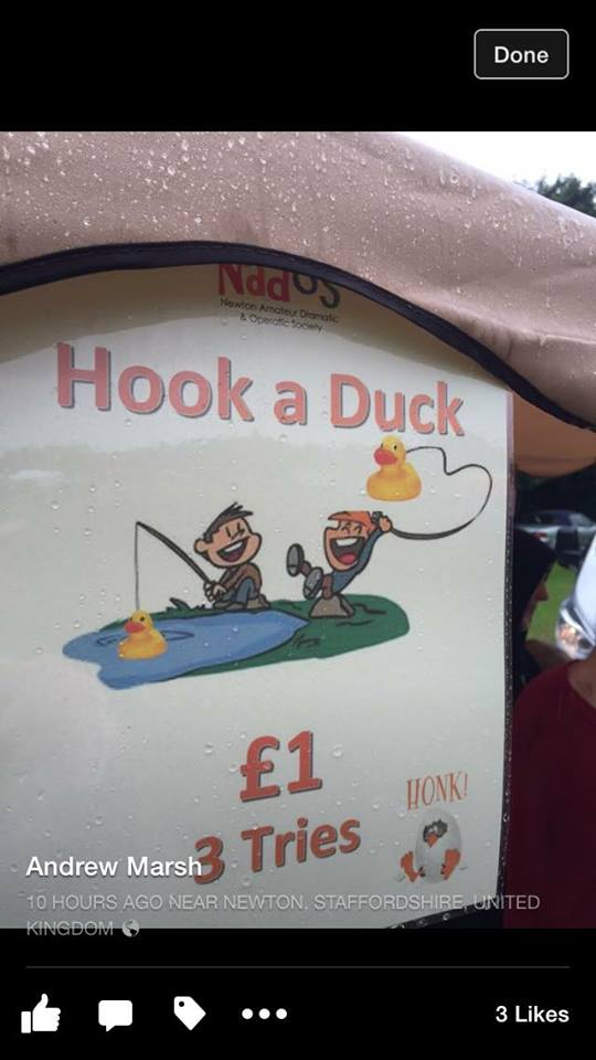 Hook a duck fundraiser for Honk!