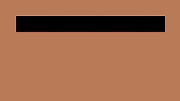 LEVEL 6 - BROWN STRIPE