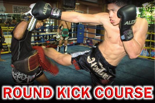 Round Kick Course.jpg