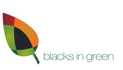 BIG_Logo-1 - Naomi Davis
