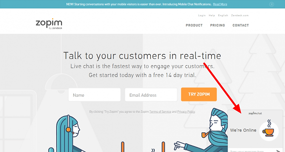 Customize LiveChat Software
