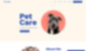 web design company example5