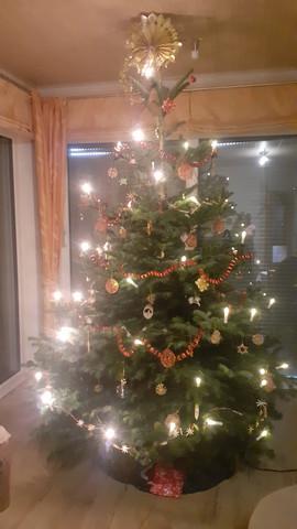 Wir wünschen Euch Frohe Weihnachten und ein gesundes und gesegnetes Jahr 2021!