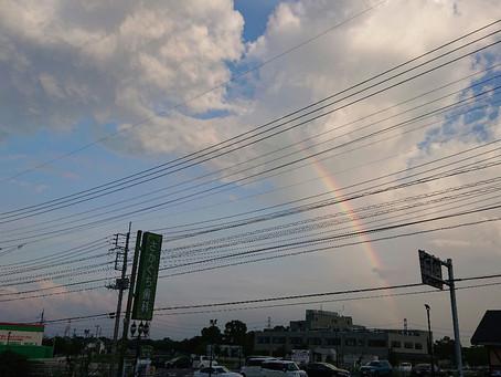 ボブから虹が見えた✨