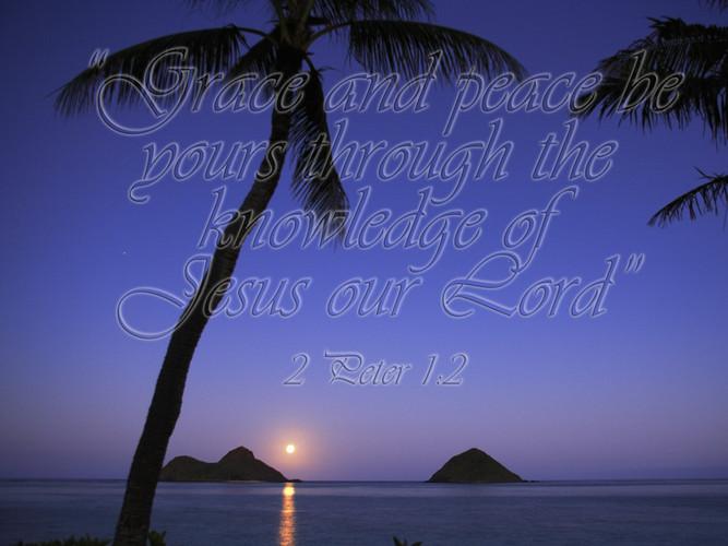 Grace Scripture.jpg