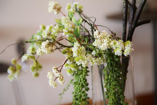 CU Flowers (6).JPG