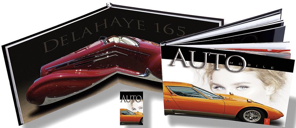 1.a.Auto.Composite.jpg