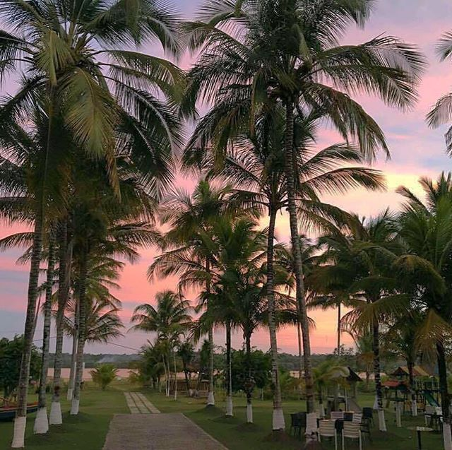 Vem pro Mister Brasil Internacional viva momentos inesquecíveis neste paraiso tropical