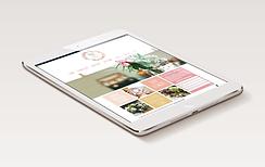 FLT Website Design.png