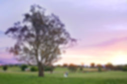 Albury Wodonga Wedding Photgraphy Sunset