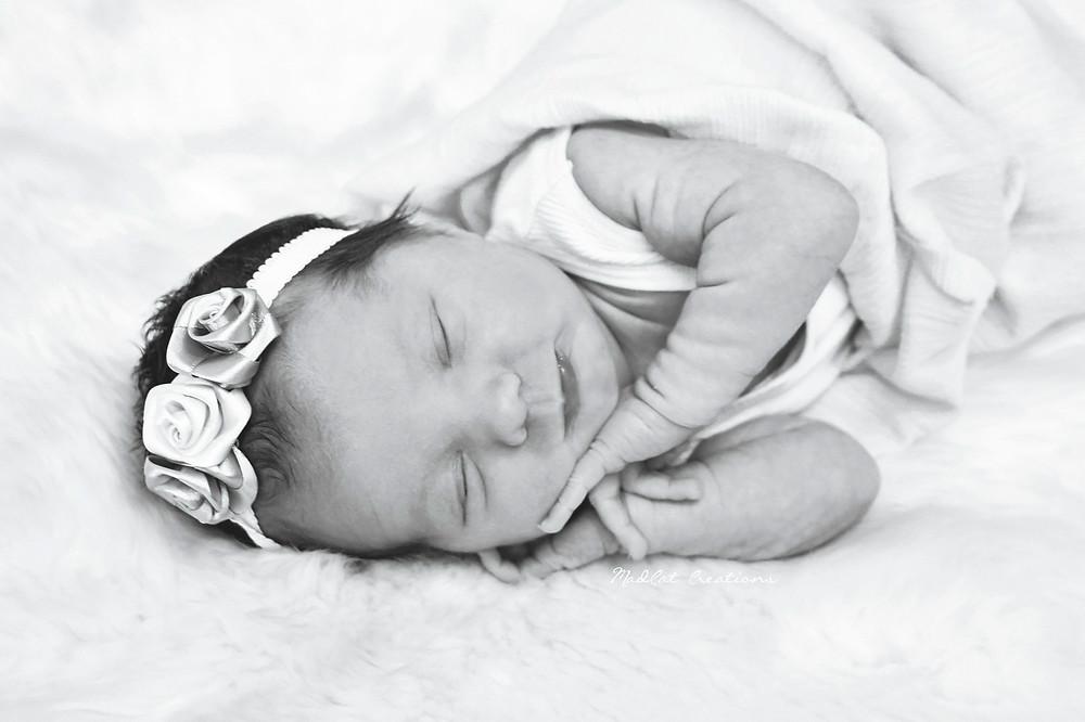 Albury Wodonga Newborn Photography Nova