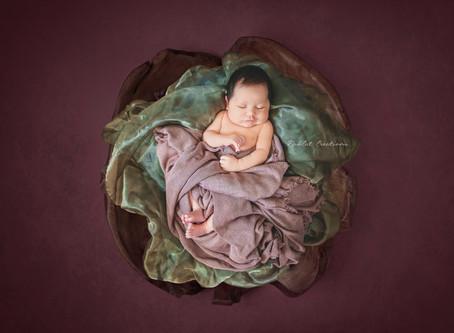 Albury Wodonga Newborn Photography: Ruby