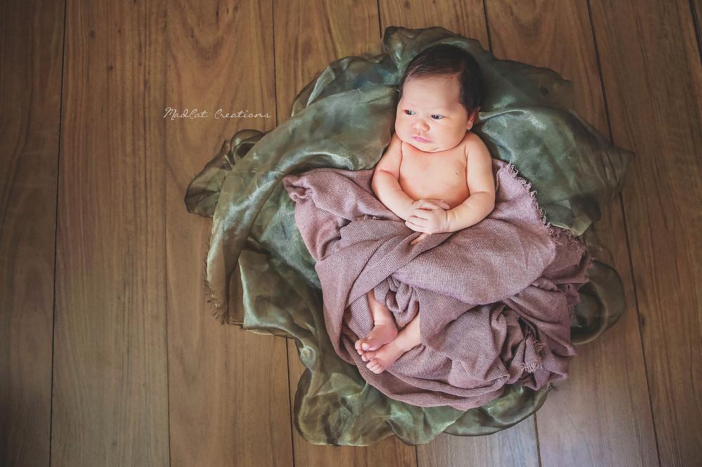 Albury Wodonga Newborn Photos
