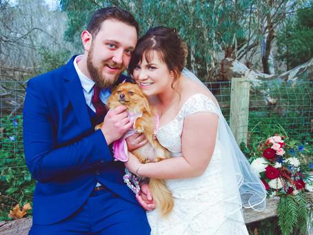 Kayla & Ryan's Geelong Wedding   Albury Wodonga Wedding Photographer