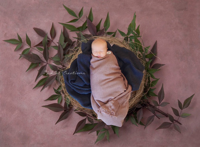 Do you really need to take newborn photos within 10 days & other tips I learnt being an Albury W