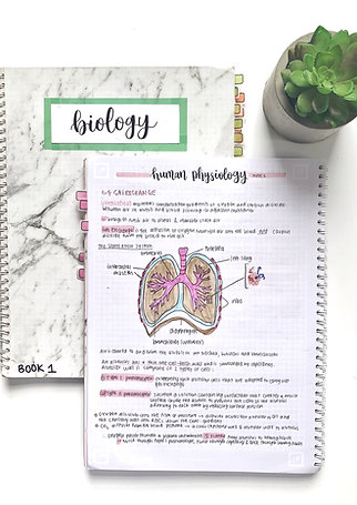 COMPLETE SET of IB Biology SL Notes