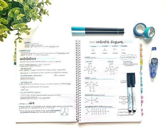 Topic 2 - Molecular Biology Syllabus Notes (WATERMARK)
