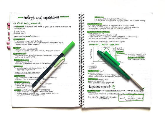 Option C - Ecology and Conservation Syllabus Notes