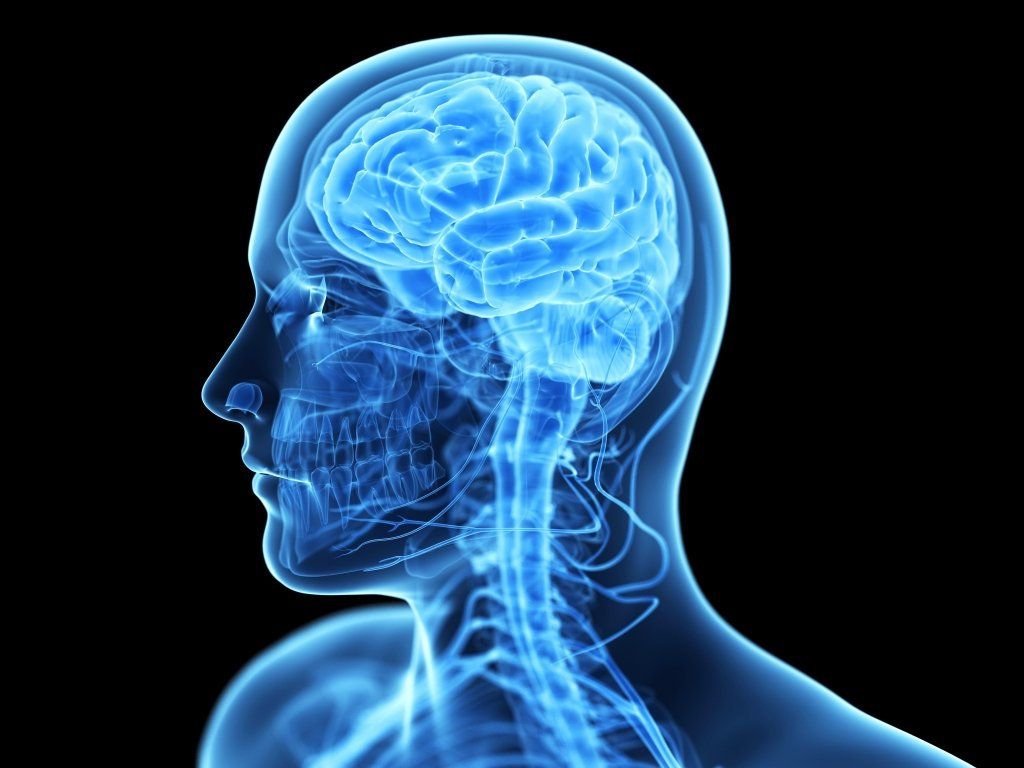 КТ головного мозку та пазух носа