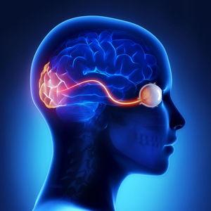 КТ головного мозку та очних орбіт