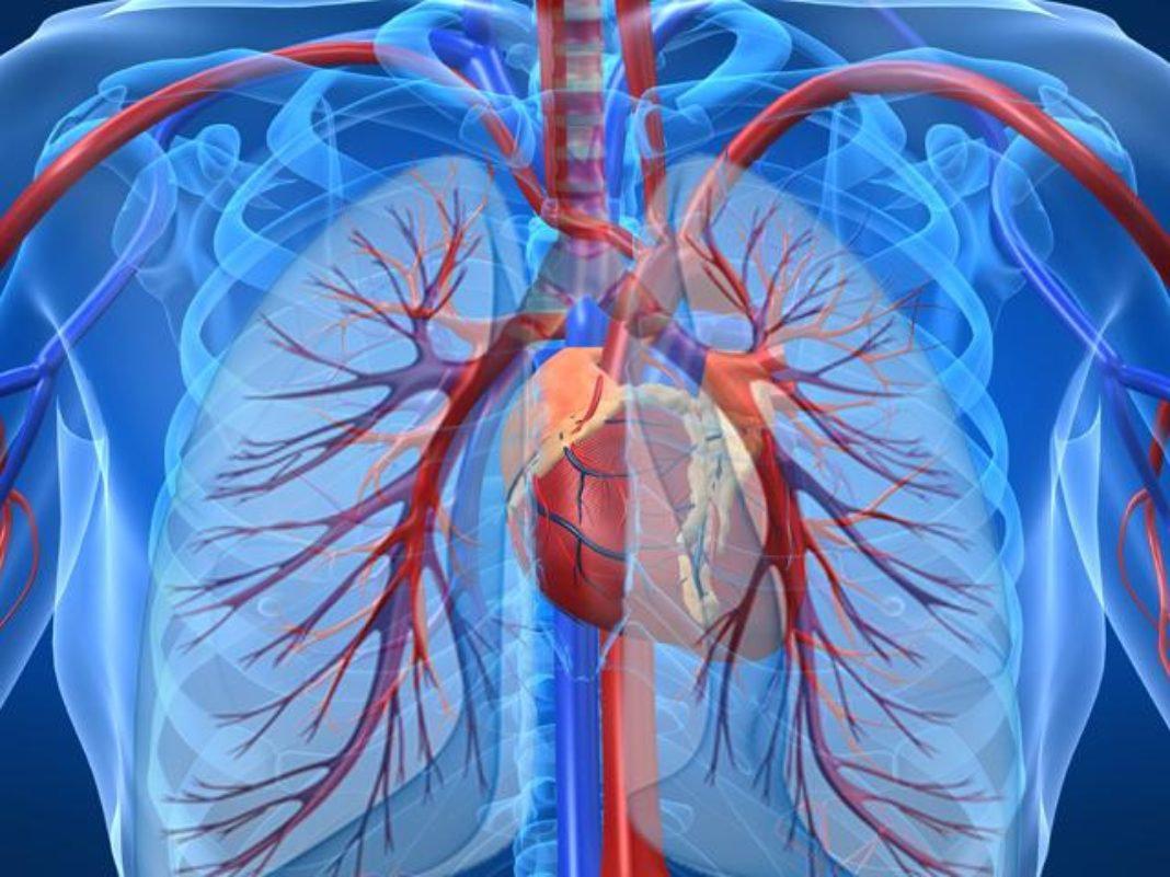 КТ-ангіографія легеневих артерій