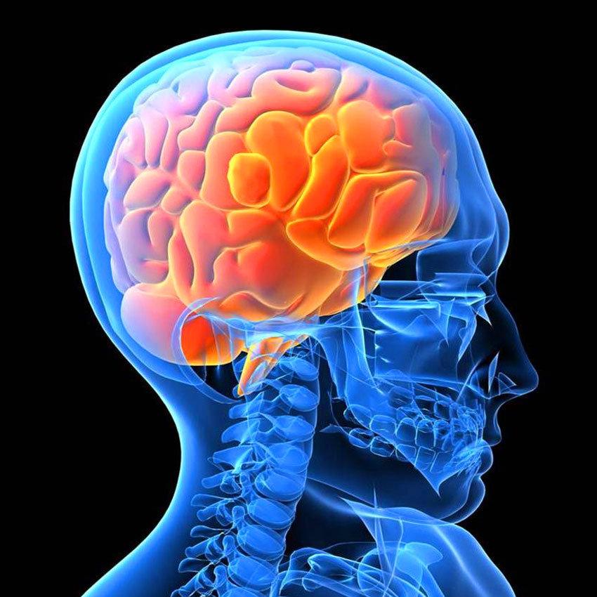 КТ мозку, очних орбіт та пазух носа