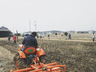 自然農法研究 田んぼセミナー