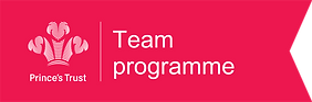 Prince's Trust Team logo (1).png