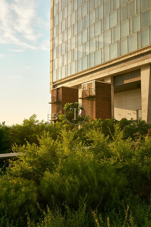 High Line Hue