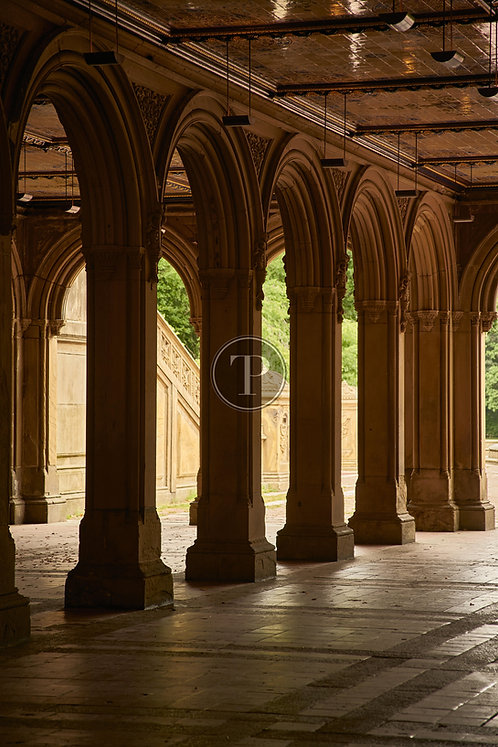 Bethesda Arches