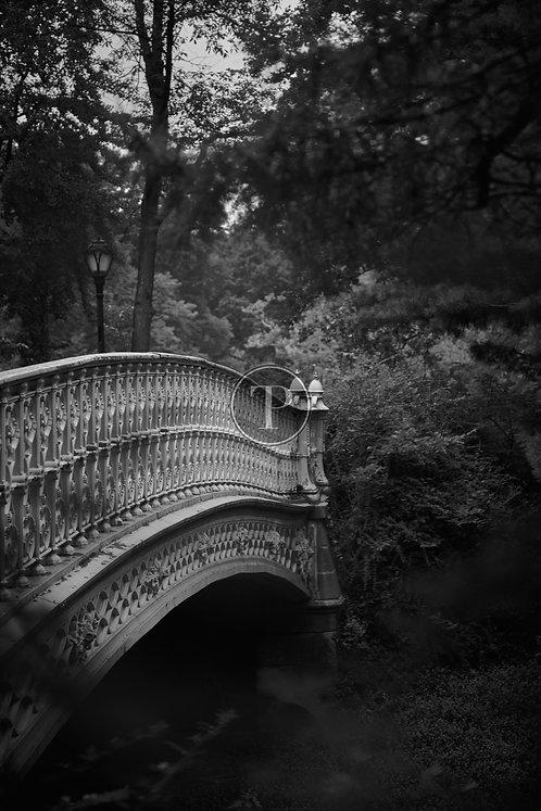 Central Park Enchantment