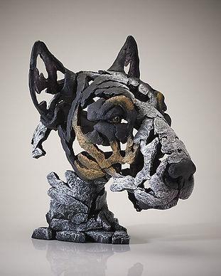 Bull Terrier 4.JPG