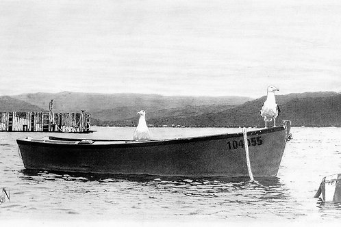"ART PRINT | Seagulls on a boat | 8"" x 15"""
