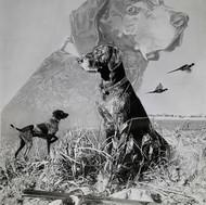 Harv the Dog. A hunting dog. Art of dogs.jpg