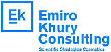 EK consultoria logo.png