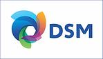 DSM site.png